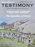 "Cover of the special issue entitled ""Feed my sheep"""